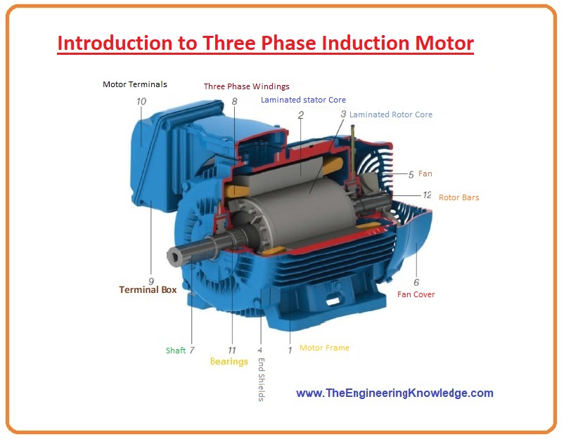 Introduction to Three Phase Induction Motor, working of three phase induction motor, three phase induction motor applications, three phase induction motor advantage, three phase induction motor disadvantage, three phase induction motor feature, three phase induction motor types, three phase induction motor pdf, three phase induction motor diagram, three phase induction motor connections, three phase induction motor circuit diagram three phase induction motor