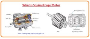 What is Wave Winding What is Lap Winding Wave Winding Lap Winding Difference Between Slip Ring and Squirrel Cage Induction Motor