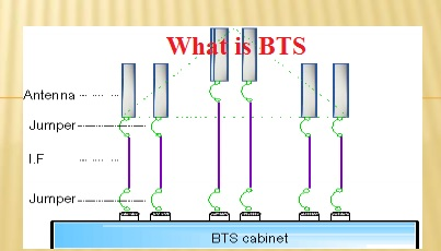 What is BTS